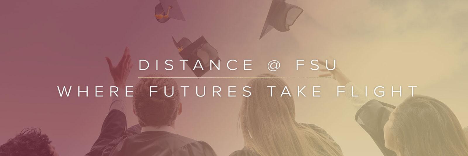 Programs Distance Fsu